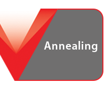 Steel Annealing